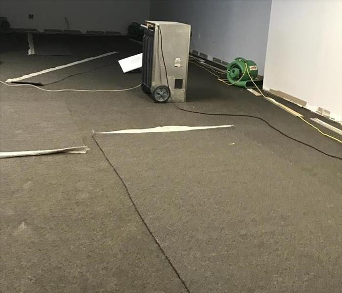 Commercial Glue Down Carpet After