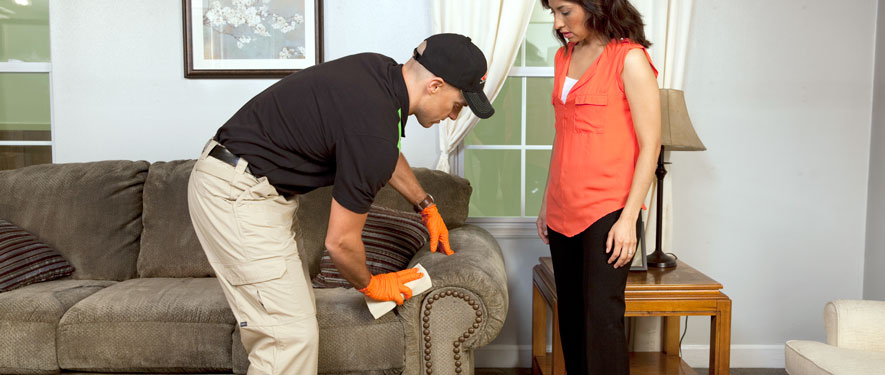 Altamonte Springs, FL carpet upholstery cleaning